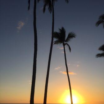 【国際交流】Aloha Study Tour 2017 第11日目 スピンオフ